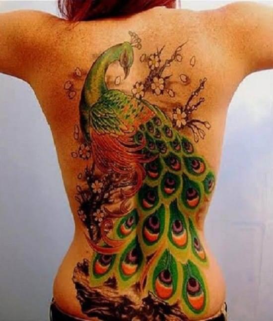 42-Peacock-Back-Tattoo