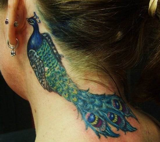 44-Peacock-Tattoo-Behind-the-Ear