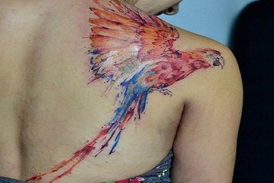 watercolor-macaw-tattoo