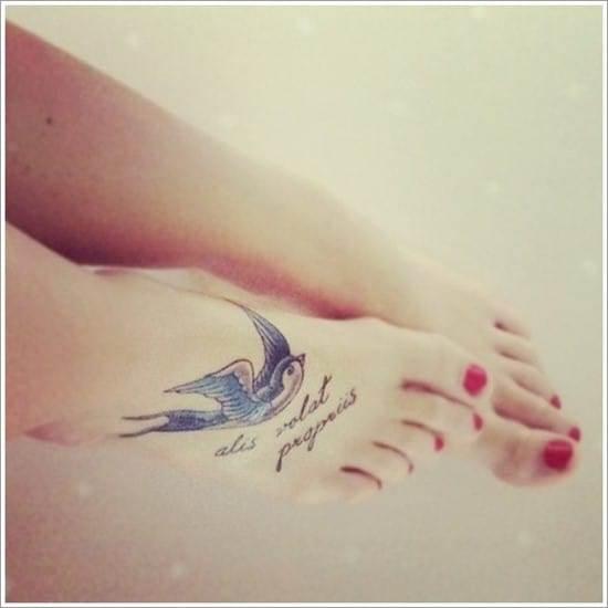 Swallow-tattoo-designs-20