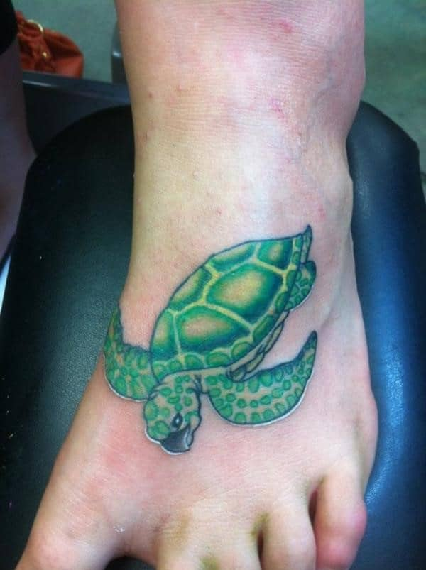 green-turtle-on-foot
