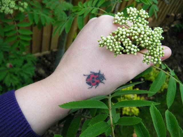 Ladybug Tattoo Designs-13