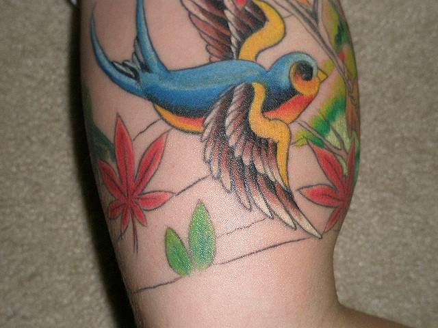 Beautiful Swallow Tattoo Designs