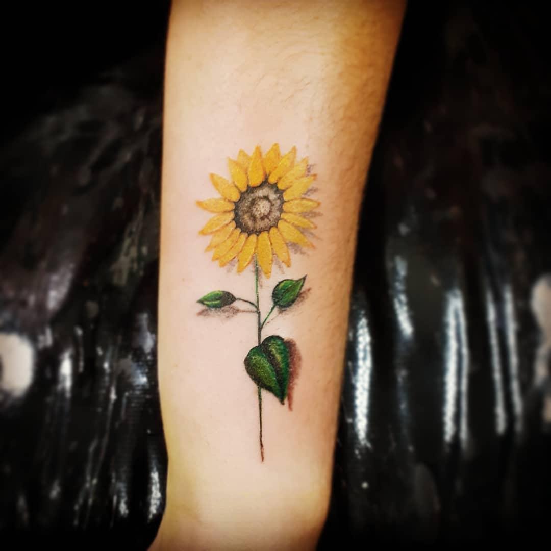 Simple Sunflower with Stem