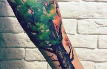Tree Tattoos On Back