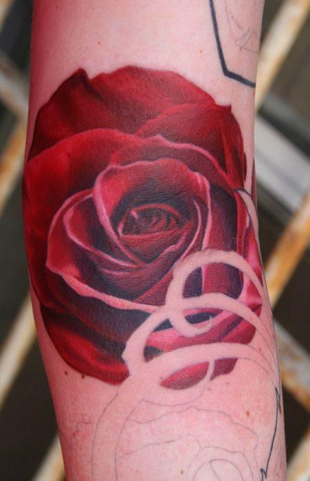 No Line Red Rose