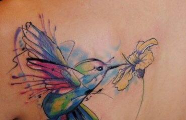Stylsih Bird Tattoo Designs on Back